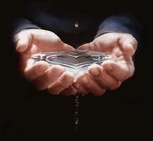 3animanshandsholdingwater-vi copy